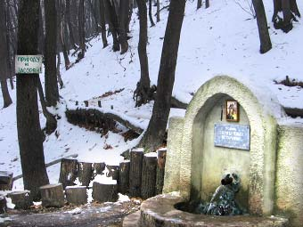 Родник Фонтан в Саратовском лесу